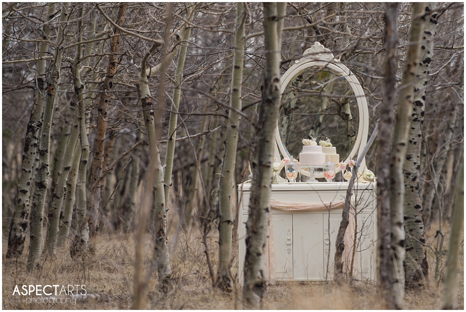 Vintage winter bridal shoot_0002