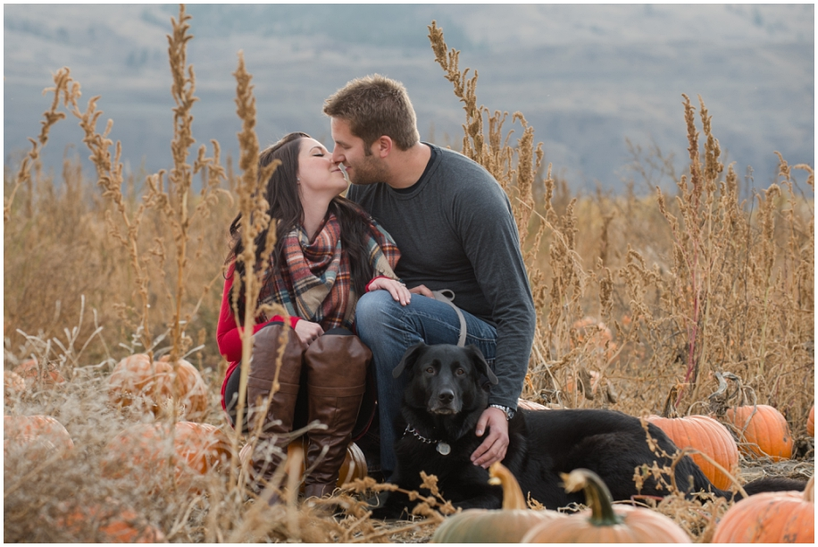 Kamloops engagement photographer in the  pumpkin patch fur baby fall romance