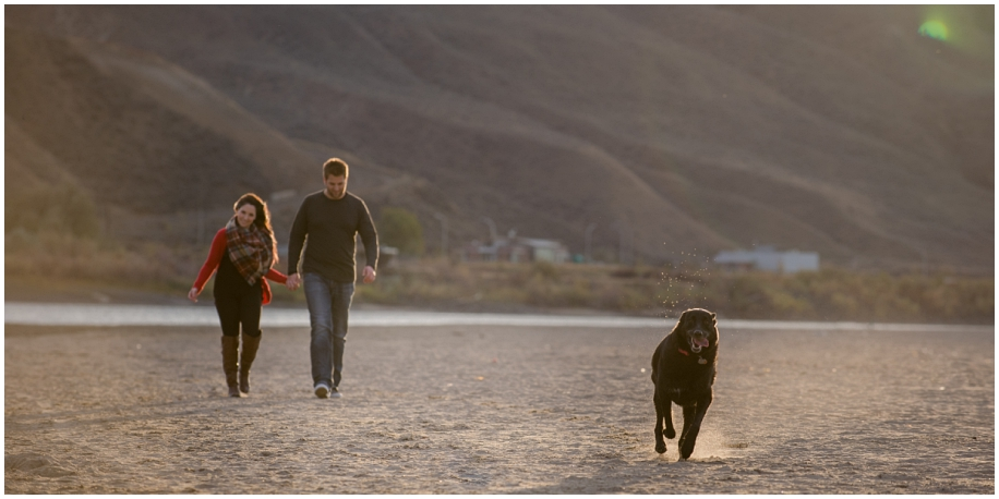 Kamloops engagement photographer sunset session on the beach fur baby dog