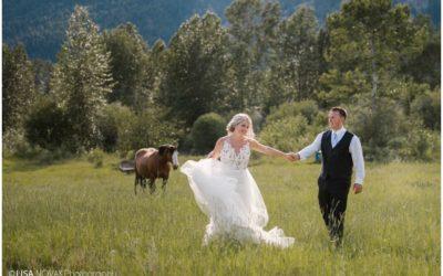 Outdoor BC summer wedding