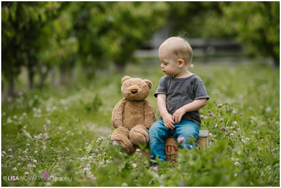 Okanagan lifestyle family session apple orchard teddy bear Summerland BC photographer candid toddler best friend