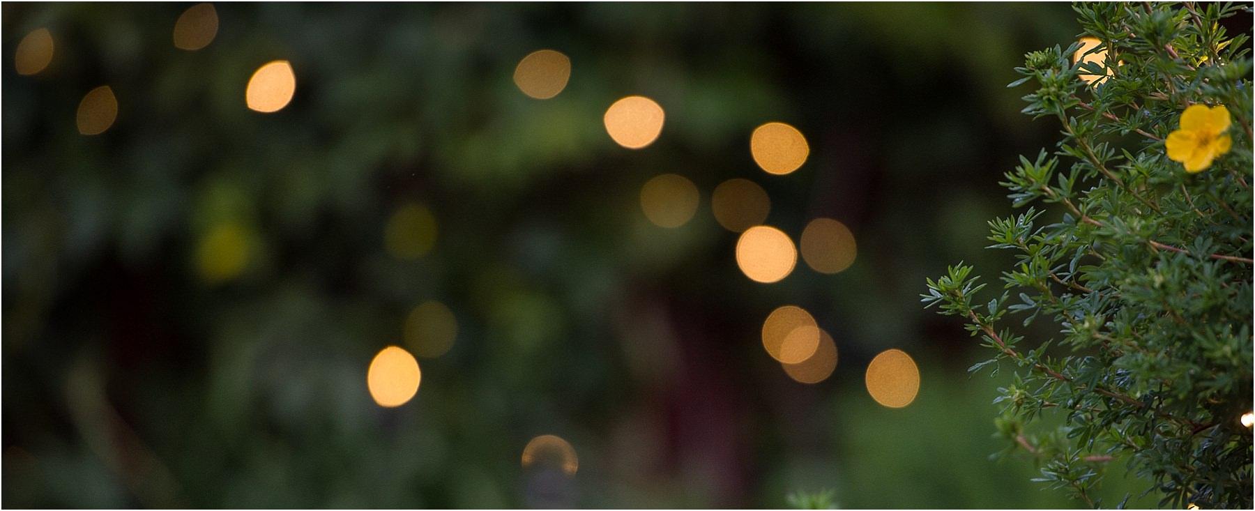 Kamloops wedding photographer details detail shot reception venue ideas first dance twinkle lights evergreen garden