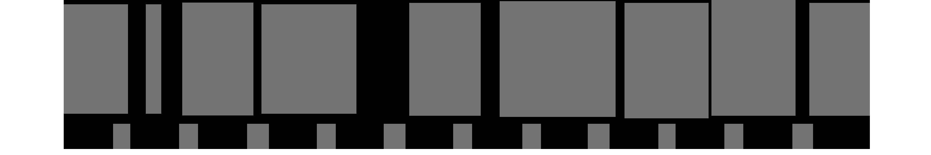 Lisa Novak logo
